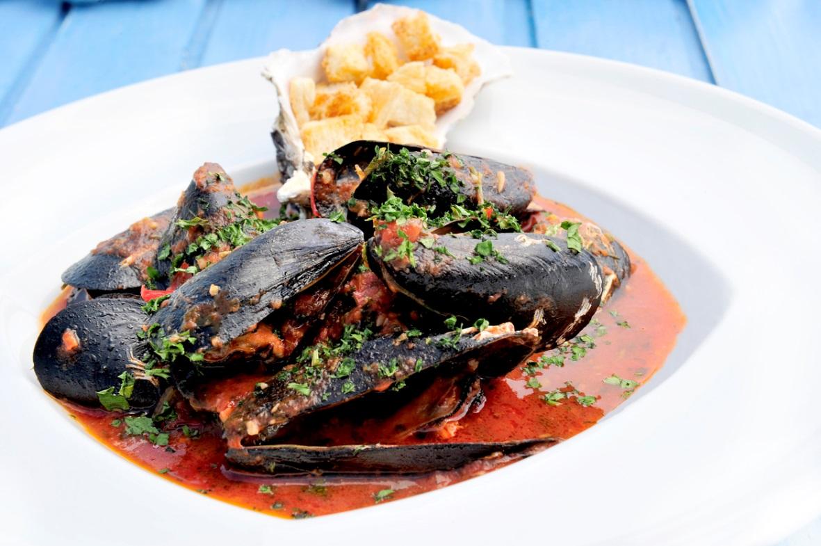VHFC0170-mussels_image1.jpeg
